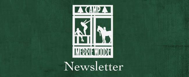 Newsletter-Blog